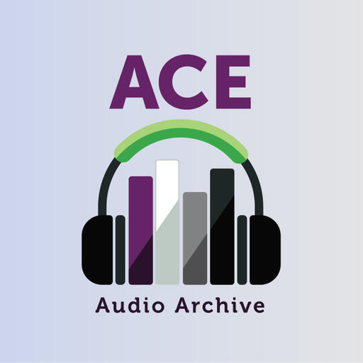 The Ace Audio Archive Cover Art